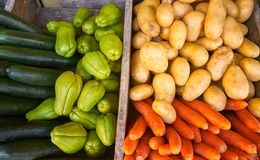Mexican vegetables carrot potato Chayote. Mexican market vegetables carrot potatoes cucumbers and Chayote squash Royalty Free Stock Images
