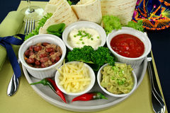 Mexican Vegetarian Platter Royalty Free Stock Images
