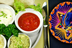 Mexican Vegetarian Platter Royalty Free Stock Image