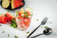 Mexican watermelon salsa Royalty Free Stock Images
