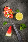 Mexican watermelon salsa stock photography