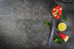 Mexican watermelon salsa royalty free stock photography