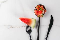 Mexican watermelon salsa stock image