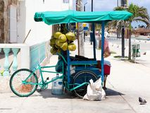 Mexican 3-wheel cargo bike street vendor in Progresso Yucatan royalty free stock photography