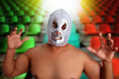 Mexican wrestling mask silver fighter gesture Royalty Free Stock Images