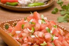 Mexicana de la salsa imagen de archivo
