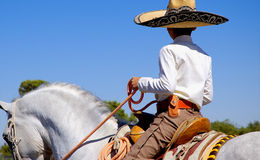 Mexicano Imagens de Stock