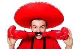 Mexicano divertido con los guantes del boxeador aislados Imágenes de archivo libres de regalías