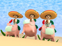 Mexicans from a sombrero Royalty Free Stock Images