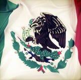 Mexicansk flagga Royaltyfri Fotografi