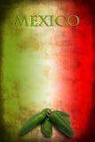 Mexicansk flagga med jalapenoen Royaltyfri Bild