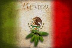 Mexicansk flagga med jalapenoen Arkivbild