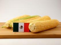 Mexicansk flagga på en träpanel med havre som isoleras på en vitbac arkivbild