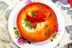 Mexicansk mat - huevosrancheros Ägg tjuvjagade i salsa för tomatsås och andra grönsaker Royaltyfri Fotografi