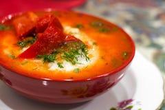 Mexicansk mat - huevosrancheros Ägg tjuvjagade i salsa för tomatsås och andra grönsaker Fotografering för Bildbyråer