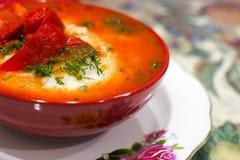 Mexicansk mat - huevosrancheros Ägg tjuvjagade i salsa för tomatsås och andra grönsaker Arkivfoto