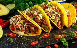 Mexicansk mat - läckra tacoskal med det jordnötkött och hemmet gjorde salsa royaltyfri foto