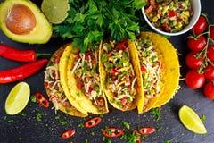 Mexicansk mat - läckra tacoskal med det jordnötkött och hemmet gjorde salsa arkivbilder