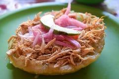 Mexicansk maträtt Royaltyfri Fotografi