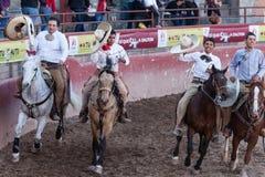 Mexicansk rodeo i San Luis Potosi Mexico royaltyfria foton