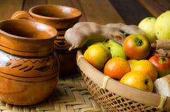 Mexicanska julponcheingredienser arkivbilder