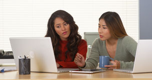 Mexicanska och japanska kvinnor som arbetar på bärbara datorn Arkivbild