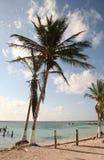 Mexico Beach Coastline Stock Photos