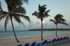 Mexico beach morning palms. Ocean Royalty Free Stock Photo