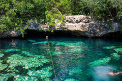 Mexico cenotes Yucatan Arkivbilder