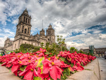 Mexico City, main Plaza Royalty Free Stock Photo