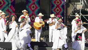 Dancers perform traditional folkloric dance from Veracruz, wearing regional typical suits, as part of the cultural activities. Mexico City, Mex. 01/12/2018 stock video