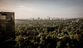 Mexico City Park. With the Mexico City skyline in the background Royalty Free Stock Photo