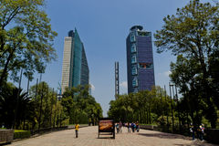 Mexico city skyscrapers from chapultepec park. MEXICO CITY,MEXICO-SEPTEMBER 14,2016: Horizontal view of mexico city´s downtown skyscrapers with pedestrians Royalty Free Stock Image