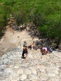 Mexico Coba pyramiduppstigning royaltyfri fotografi