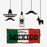 Mexico culture and landmark design. Hat tequila  and mutache. Mexico landmark and mexican culture theme. Colorful design. Vector illustration Royalty Free Stock Photos