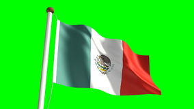 Mexico flag Royalty Free Stock Photo