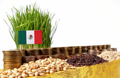 Mexico flag waving with stack of money coins and piles of wheat. And rice seeds royalty free stock photo