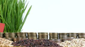 Mexico flag waving with stack of money coins and piles of wheat. And rice seeds stock footage