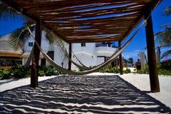 Mexico hammock tree palm Royalty Free Stock Photos