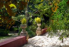 Mexico Merida hacienda finca rancho san jose Royalty Free Stock Photos