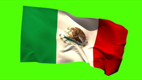 Mexico national flag blowing in the breeze stock video footage