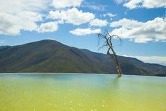 mexico oaxaca för aguael-hierve tillstånd Arkivbild