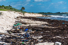 Mexico ocean Pollution Problem plastic litter Royalty Free Stock Images