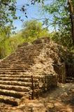 Mexico på vägen till den Coba pyramiduppstigningen royaltyfri foto