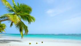Mexico Paradise sea beach landscape. Beautiful solar sea background. Loop video