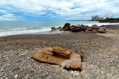 mexico Puerto Vallarta Royaltyfri Fotografi