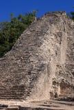 Mexico pyramid at  Coba. Mexico Quintana Roo Coba Mayan archaeological site - Ruins of pyramid Royalty Free Stock Image
