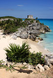 Mexico Quintana Roo Tulum Mayan ruins. And deserted Caribbean beach with iguana in the foreground Stock Images