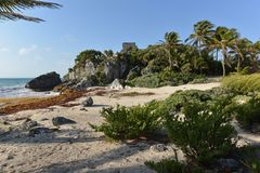 Mexico, Riviera Maya, Tulum. Ruins of buildings of Tulum archaeological site Stock Image