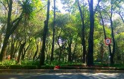 Mexico& x27;s City Park General Francisco Villa Stock Photos